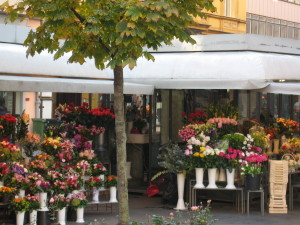 preradovićev trg, cviijeće, cvjetni trgprodavaonice cvijeća, zagreb