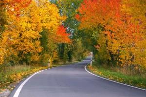 autumn-1001140_960_720-300x199