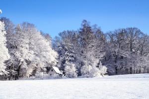 snijeg-pejzaž-300x200