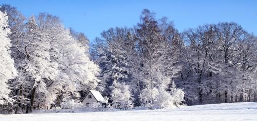 snijeg, pejzaž
