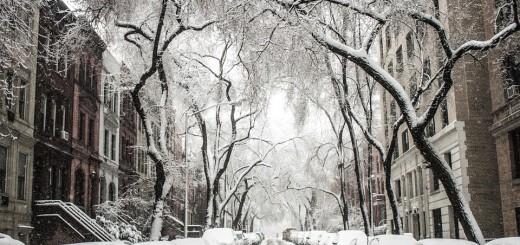 snijeg, zima, snijeg na cesti