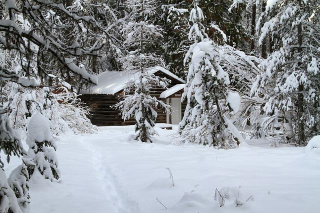 zima, snijeg, koliba, planina