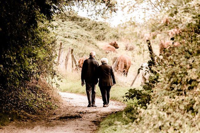umirovljenici, šetnja