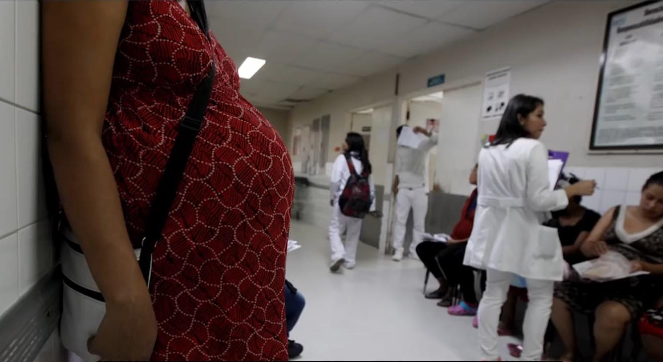 zika virus, trudnica