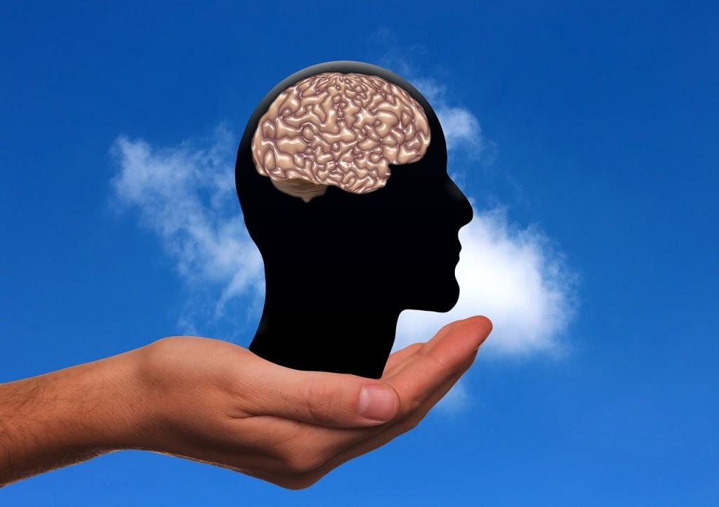 """FENOMENALNE SPOSOBNOSTI ČOVJEKA: U naš """"mali"""" mozak stane 4,7 milijardi knjiga! 1"""
