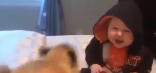VIDEO: PRIJATELJSTVO I RADOST - Pogledajte čarobnu igru male bebe i maloga psića
