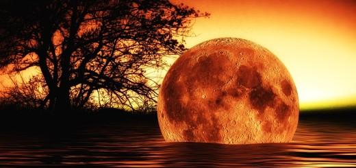 """STRUČNE PROGNOZE: Što bi se dogodilo nakon """"smaka svijeta"""" - povratak u kameno doba?!"""