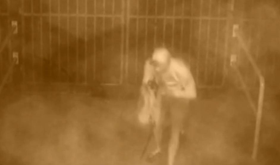 VIDEO: SVASTIKA NA POLJUDU - Je li ovo trag majstora koji su krivi za kukasti križ