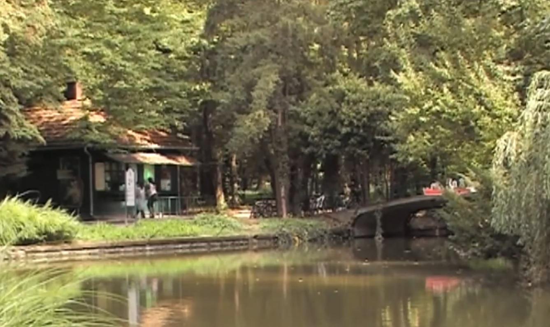 VALENTINOVO U ZOOLOŠKOM VRTU: Kako zavode i ljube pojedine životnje - besplatne ture