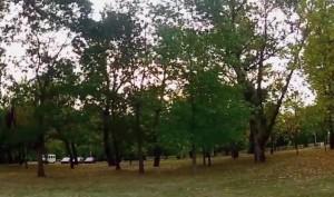 jarun, park
