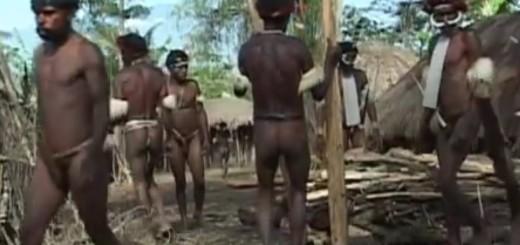 VIDEO: NEVJEROJATNO - Oni još uvijek žive na drveću uz barbarske običaje i jedu ljude 1