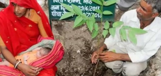VIDEO: TO JE LJUBAV - Za izgubljenu kći zasadio 111 stabala - mjesto potom ekonomski procvalo
