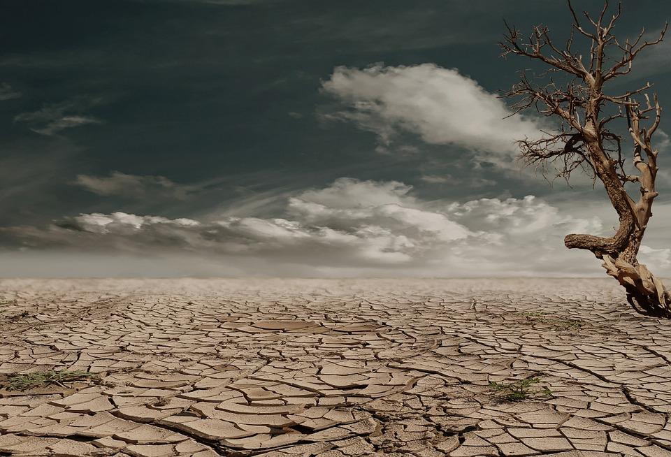 NOVA UZBUNA: Klimatske promjene prijete i ekonomiji - svijet u siromaštvu