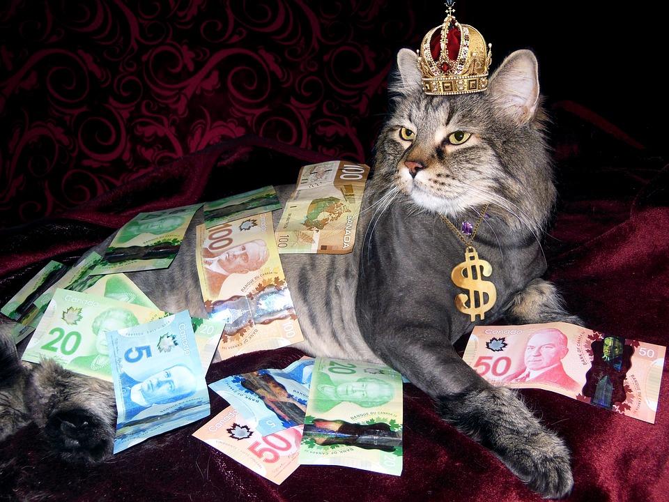 """AFERA """"PANAMA PAPERS"""": Hoće li na kraju pasti velike """"mačke"""" - moćnici koji su prali milijune?"""