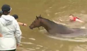VIDEO: APOKALIPTIČNI PRIZORI - Poplave uzdrmale Houston - petero ljudi je poginulo