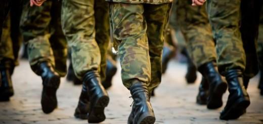 vojska, hrvatska