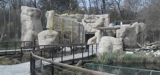 Lavlja stijena Kidepo, 6. 100. 000 kuna vrijedna investicija – ponos Zoološkog vrta