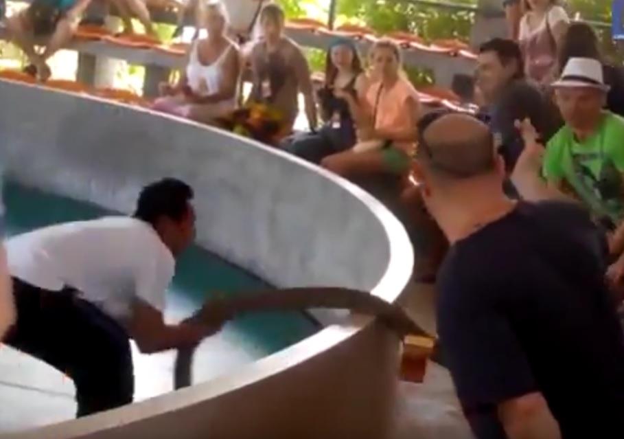 VIDEO: ZAMRLI OD STRAHA - Pogledajte što se događa kada krotitelju pobjegne kobra