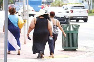 pretilost, debljina, debeli