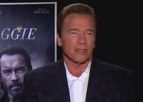 VIDEO: NAPAO GA SLON - Bilo je bolje nego na filmu - kaže Schwarzenegger 1