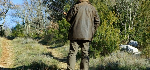 SMRT U LOVU NA VEPRA: Nehotice usmrtio kolegu lovca - ne zna se zašto je puška opalila
