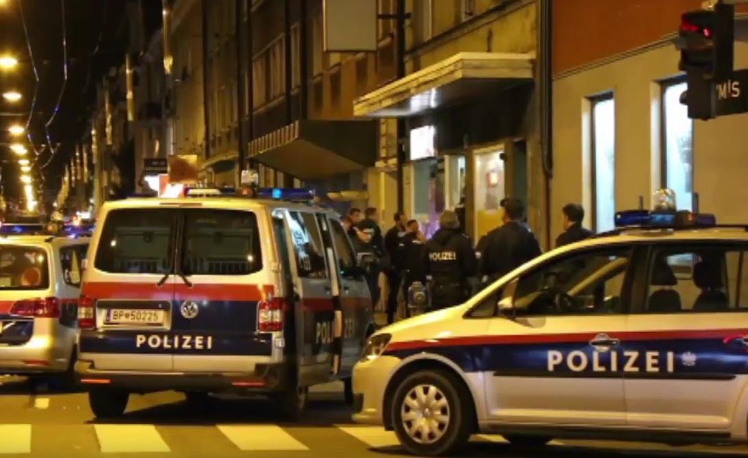 policija, Austrija