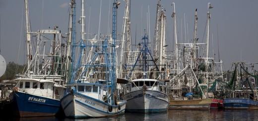 ribari, ribarski brodovi