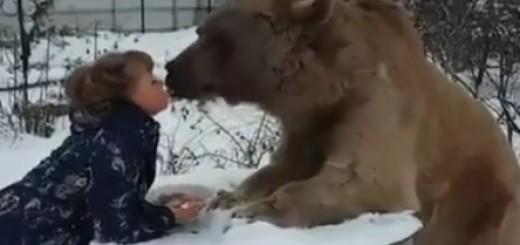 žena, medvjed