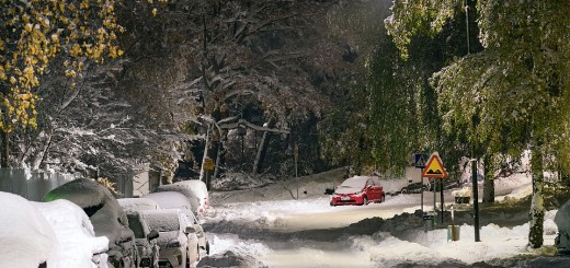 snijeg, zima