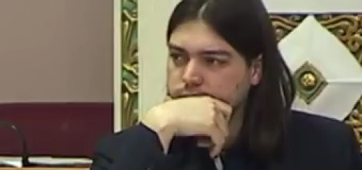 ivan vilibor sinčić, portret
