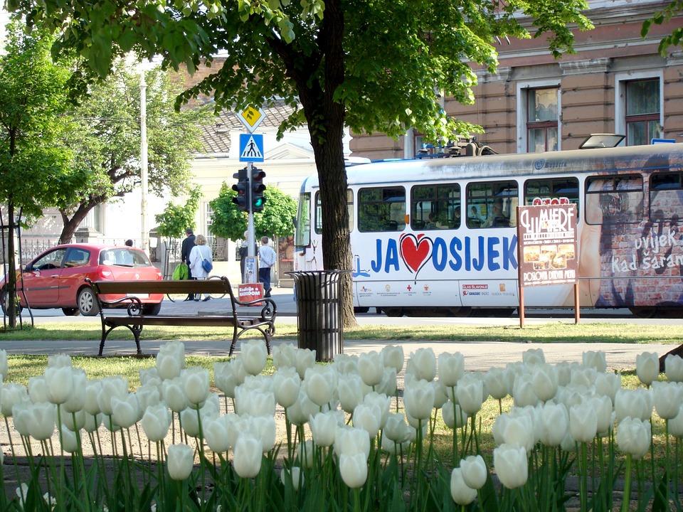 osijek, tramvaj