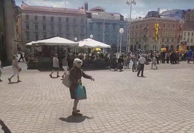 plesačica, zagreb