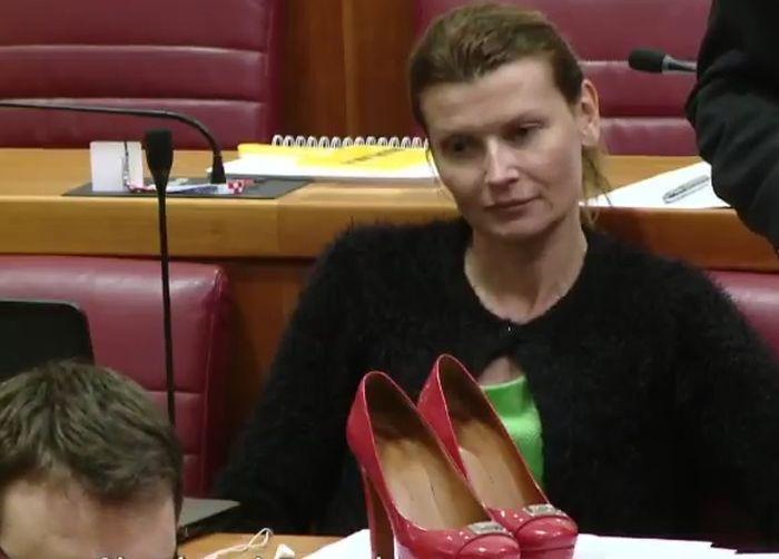 glasovac, cipele