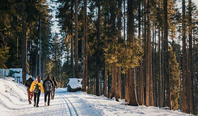 zima, planinarenje