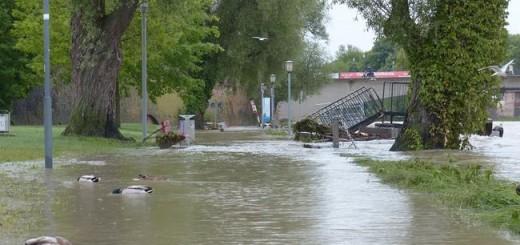 poplava, kuće