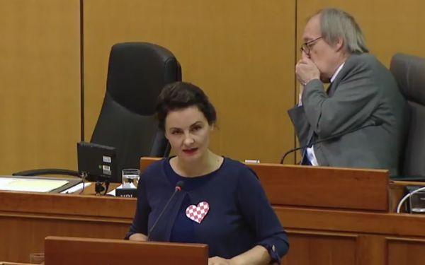 Irena Petrijevčanin Vuksanović