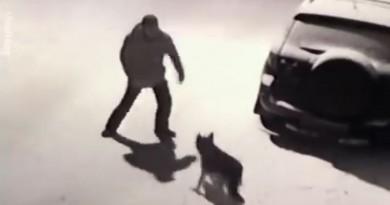 VIDEO: URNEBESNO – Ovako je prošao čovjek koji je udario psa