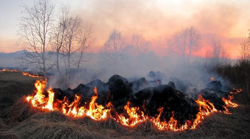 požar-vatra-polje