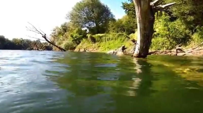 Ilustracija: Rijeka Kupa