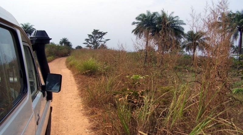 cesta zemljana